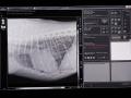 19  RTG monitor -  přímá digitalizace _S4B3254